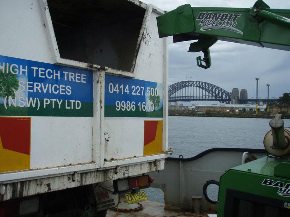 high tech trees sydney